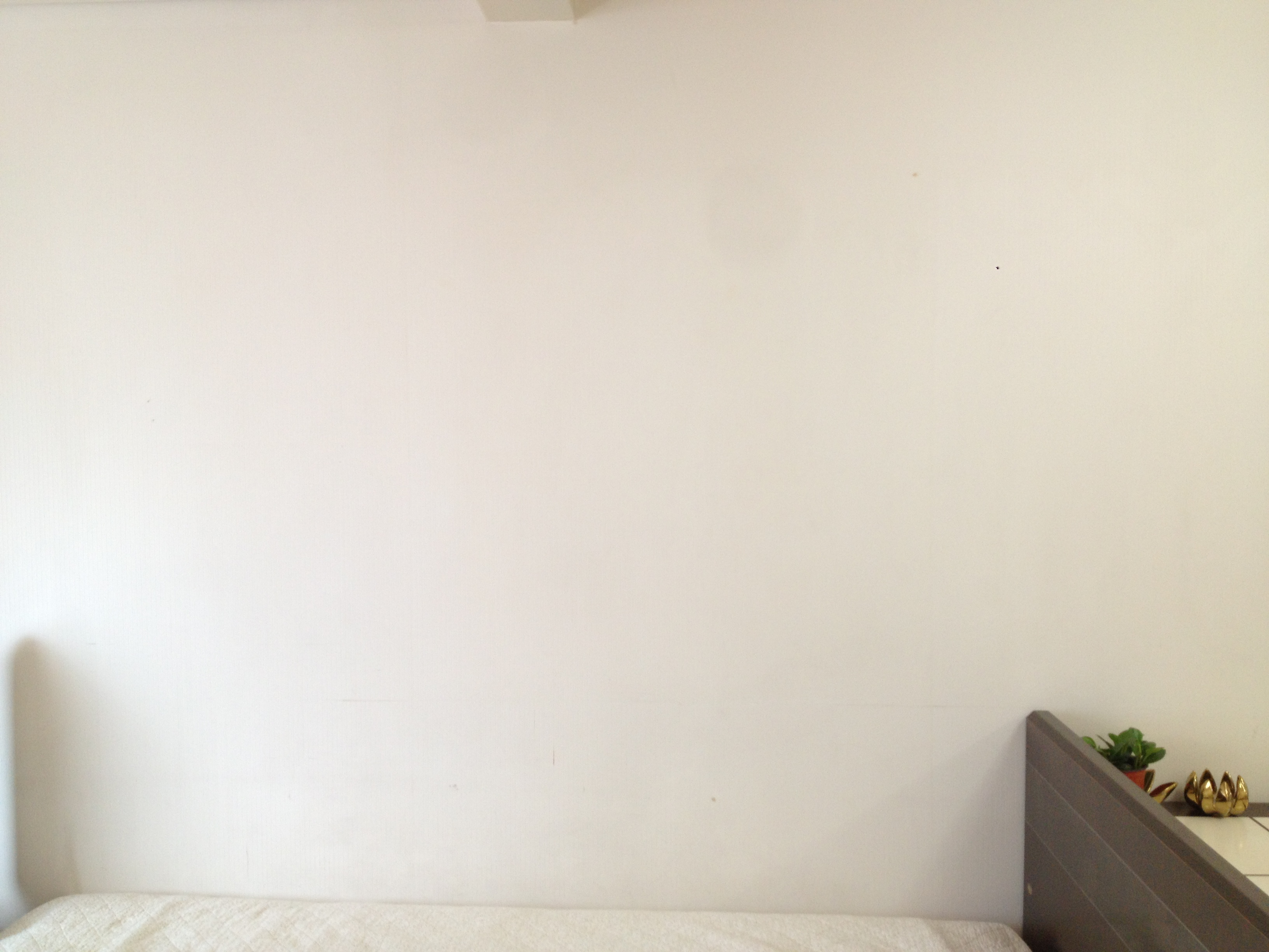 Room with Blank Wall